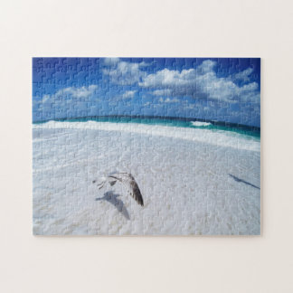 Seagull Flying Over The Water Jigsaw Puzzle