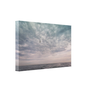 Seagull flying under a cloudy sky canvas print