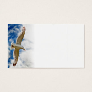 Seagull gliding in flight close up with blue skies business card