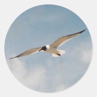 Seagull Gliding Sticker