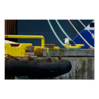 Seagull in an abstract environt poster