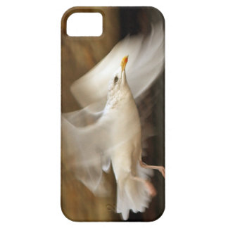 Seagull in flight barely there iPhone 5 case