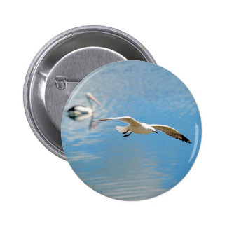 Seagull In Flight - Pelican on Water 6 Cm Round Badge