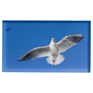 Seagull in Flight Table Card Holder