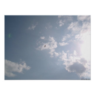 Seagull in Shining Clouds Poster