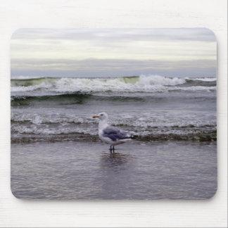 Seagull in the Ocean Mousepad