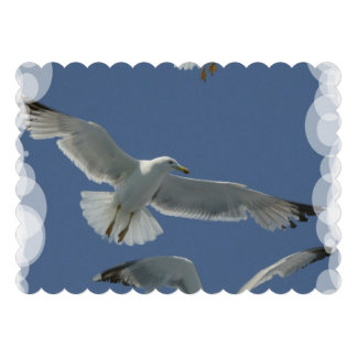 Seagull Personalized Announcements