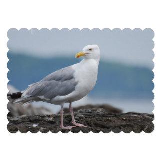Seagull Custom Invitations