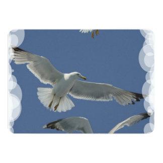 Seagull Custom Announcements