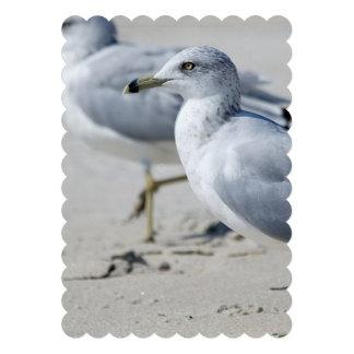 Seagull Invitation