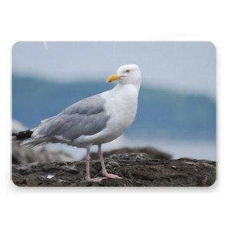 Seagull Personalized Invitation