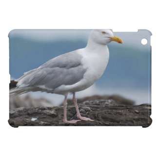 Seagull iPad Mini Covers