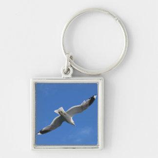 Seagull key chain