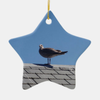 Seagull On A Slate Roof Christmas Ornament
