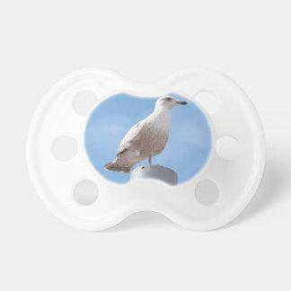 Seagull on pole dummy