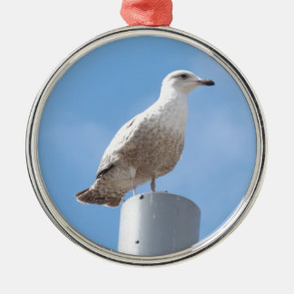 Seagull on pole Silver-Colored round decoration