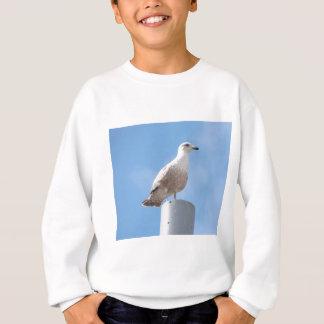 Seagull on pole sweatshirt