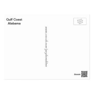 Seagull on the Gulf Coast of Alabama Postcard
