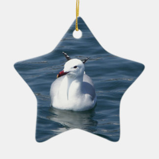 Seagull on the water ceramic star decoration