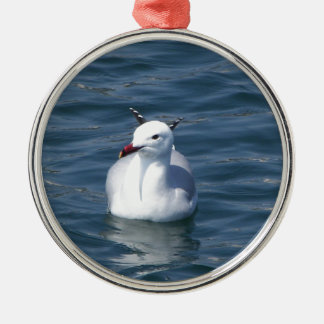 Seagull on the water Silver-Colored round decoration