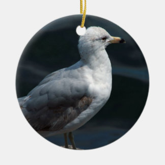 Seagull Ornament