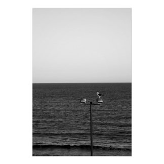 Seagull over the lamp post poster