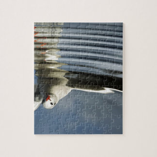 Seagull reflection jigsaw puzzle