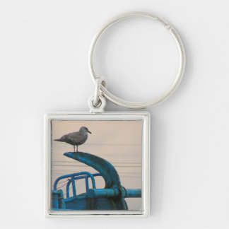 Seagull Rests On Anchor Of Ship | Choshi Silver-Colored Square Key Ring