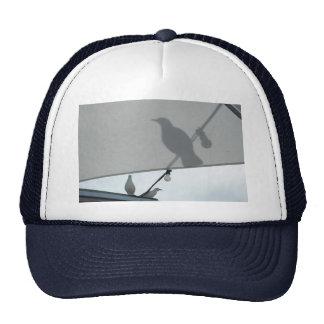 Seagull shadows cap