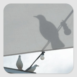 Seagull shadows square sticker