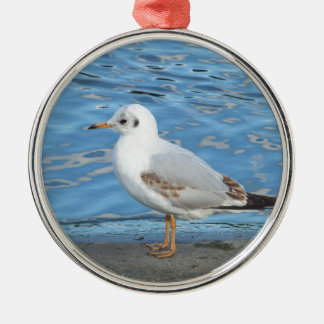 Seagull Silver-Colored Round Decoration