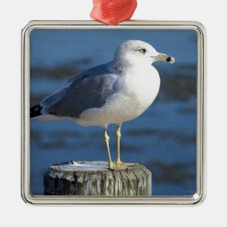Seagull Silver-Colored Square Decoration