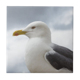 Seagull Small Square Tile