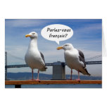 Seagull speaks French Cards