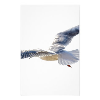 Seagull Stationery