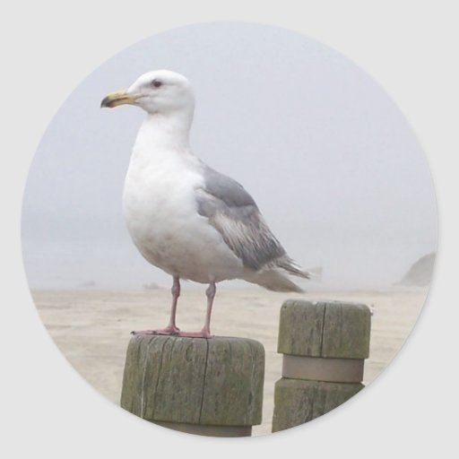 Seagull Round Stickers