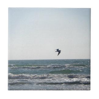 Seagull Tiles