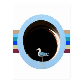 Seagull Window Postcard