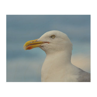 Seagull Wood Panel