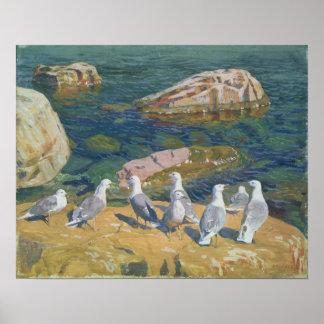 Seagulls, 1910 poster