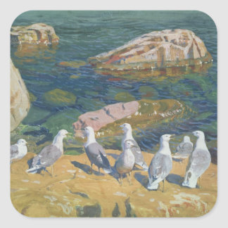 Seagulls, 1910 square sticker