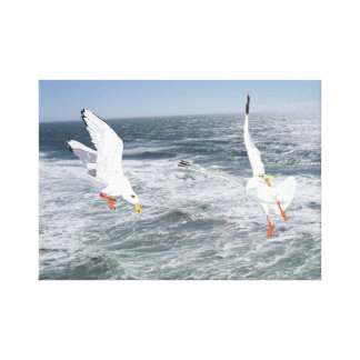 Seagulls And The Sea Gallery Wrap Canvas