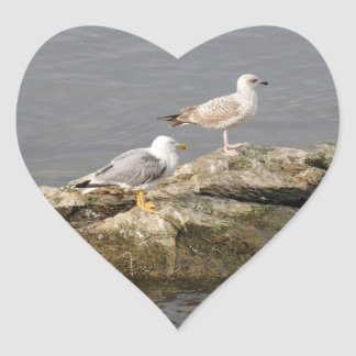 Seagulls Heart Sticker