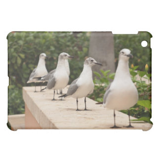 Seagulls in a Row iPad Cover