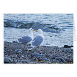 Seagulls Kissing on the Beach Photo Greeting Card