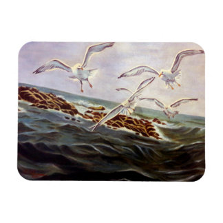 Seagulls of Kindness Magnet