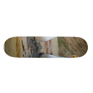Seagulls On Oceans Beach Skateboard Deck