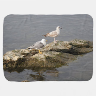 Seagulls on Rock Baby Blanket