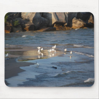 Seagulls on the beach. mouse pad
