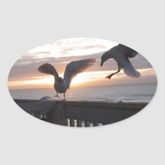 Seagulls on the deck at sunset. oval sticker